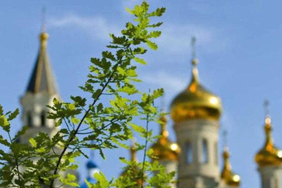 У свято Трійці від чистого серця бажаємо вам мирного, доброго, щасливого життя, в якому не буде ні бід, ні смутку